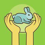 рисунок кролик в ладонях